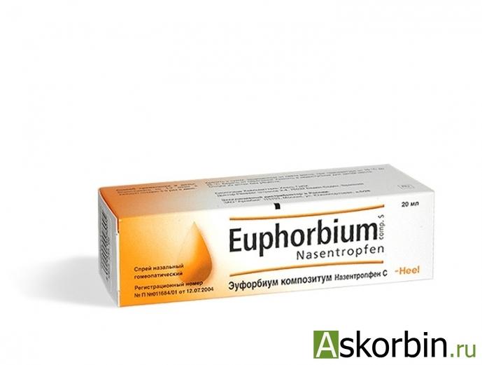 Эуфорбиум композитум спрей наз. 20 мл, фото 1