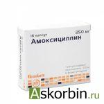 АМОКСИЦИЛЛИН 0,25 N16 КАПС, фото 1