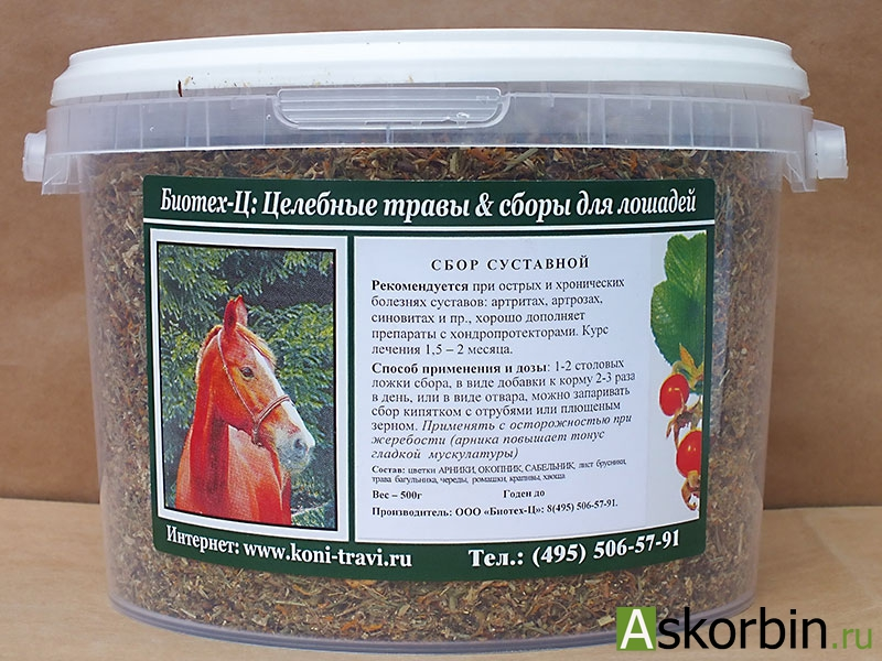 СБОР ЖЕЛУДОЧНО-КИШЕЧНЫЙ (ФИТОГАСТРОЛ) 50,0, фото 2