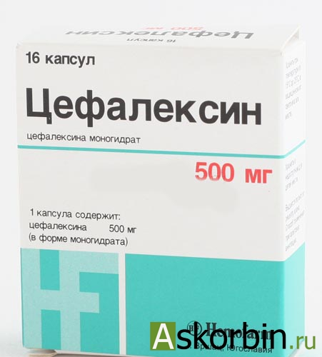 ЦЕФАЛЕКСИН 0,5 N16 КАПС, фото 3