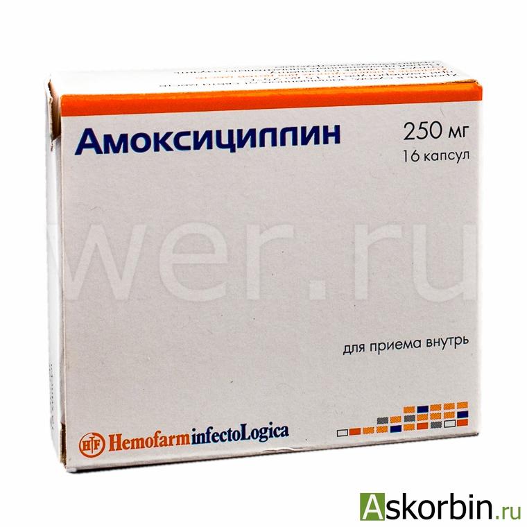 АМОКСИЦИЛЛИН 0,25 N16 КАПС, фото 2