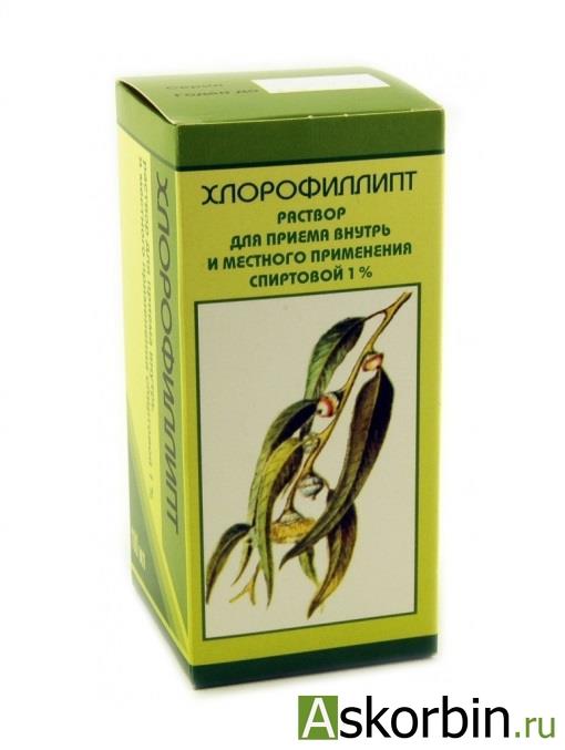 хлорофиллипт 1% 100мл спирт.р-р, фото 5