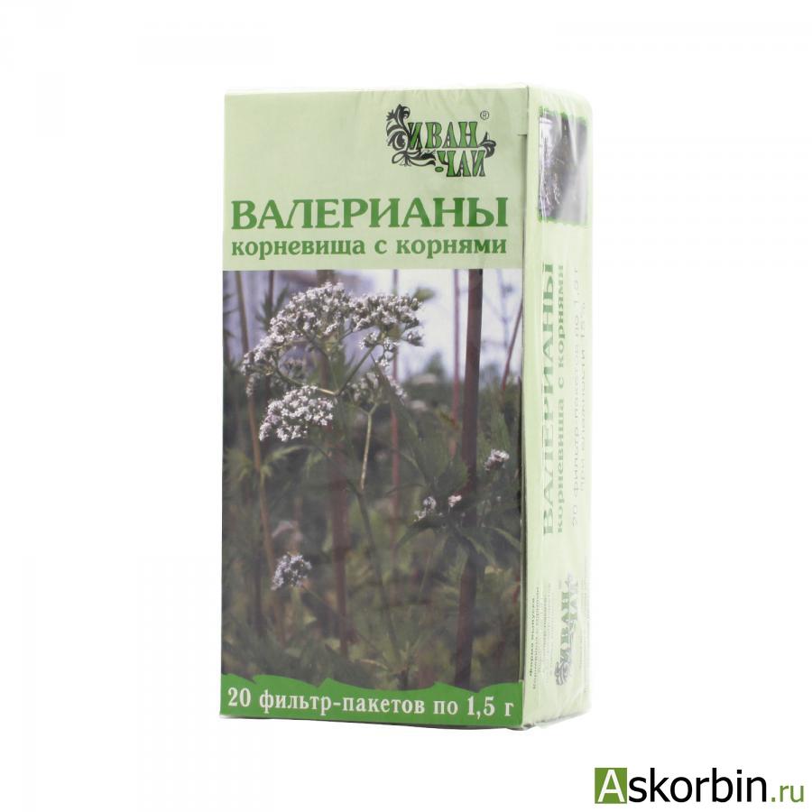 валерианы корневища с корн. 1,5г 20 ф/п, фото 2